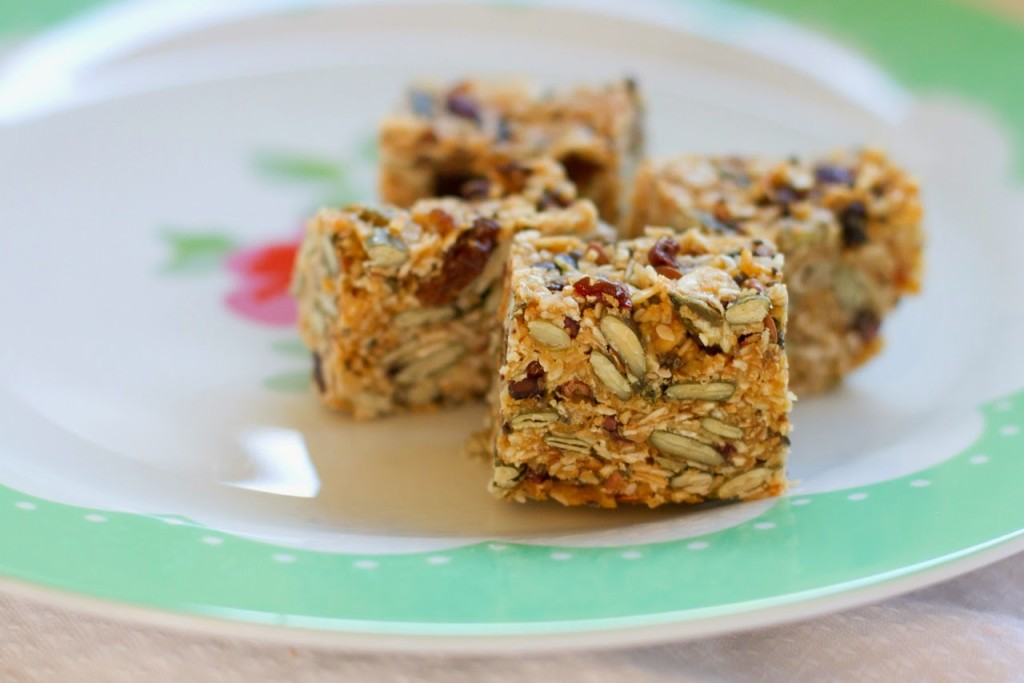 .Thermomix Cooking: Birdseed Bars with NO refined sugar ...